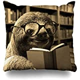 Throw Pillow Covers Funny Sloth Reading Books Pillowslip Square Sofa Cute 18 x 18 Inch 45x45cm Cushion Cases Pillowcases