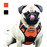 Papipaw Dog Chest Harness No Tension Straps Water-Resistant Fabric Adjustable and Control Night Reflective Safety Harness Suitable for Walking, Travel, Training, etc (S, Orange)