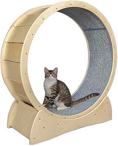RSTJVB Tapis Roulant Rotondo del Giocattolo del Gatto, Tapis Roulant del Giocattolo del Gatto del Gatto del Gatto del Gatto con Il Dispositivo di Perdita di Peso Sportivo