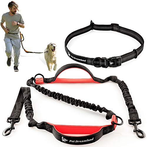 Pet Dreamland Hands Free Leash - Professional Shock Absorbing, Reflective Bungee Harness