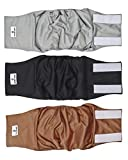 Pet Parents Premium Washable Dog Belly Band (3pack) of Male Dog Diapers, Color: Natural, Size: Small Dog Wraps