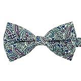 Ecravate - Noeud papillon 'Liberty' Blanc, Bleu et Violet à Paisley