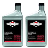 Briggs and Stratton 100074 Pack of (2) 1-Quart...