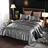 A Nice Night Satin Silky Soft Quilt Sexy Luxury Super Soft Microfiber Bedding Comforter Set , Light Weighted (Silver, King(102-by-88-inches))