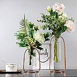 Tongxu Lot de 2 vases modernes en verre avec cadre tubulaire en métal rose doré...