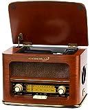 Nostalgie Kompaktanlage   Retro Radio Holz mit CD Player   USB Wiedergabe   Musikanlage Retro Style   Stereoanlage   Fernbedienung   Küchenradio   Vintage Optik   Nostalgieradio   integr. Lautsprecher