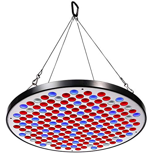 Niello® Reflector 50W LED Pflanzenlampe, LED Grow Light Vollspektrum Pflanzenlicht Led Grow Lamp nur 1 cm Dick mit Schalter für Zimmerpflanzen Gemüse und Blumen