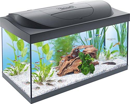 Tetra Starter Line | Aquarium | Complete set | LED-verlichting | Onderhoudsmiddelen | 54L 80L en 105L