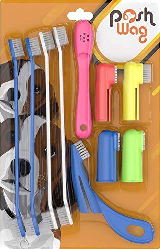 PoshWag Dog Tooth Brush Dog Set Kit [Remove Plaque...
