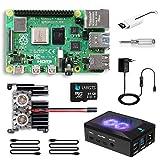 LABISTS Raspberry Pi 4 Model B 8GB RAM Starter Kit, RPi Barebone con MicroSD 64GB, Tipo C Alimentatore 5.1V 3A, Ventola, 2 Micro HDMI, Raspberry Pi 4 Case Protettiva Nera e Lettore di Scheda