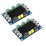 HiLetgo 2pcs TPA3116 100W Power Amplifier Board DC 12V 24V TPA3116DA Mono Channel Digital Stereo Audio Amplifier Board High Power AMP Module