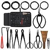 Audeuk - Juego de herramientas para bonsi, 10piezas, con tijeras, cizalla y cortadores de acero al carbono, alambre para plantas, caja de nailon