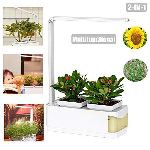 ZHANGRONG Multifunktional Intelligente Hydroponik -Intelligentes Indoor-Gartensystem Mit LED-Pflanzenwachstumslampe -Indoor Kräutergarten LED Pflanzenleuchte