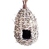 Wildlife World Poche Nichoir Haute Fourni avec Fil de Fixation