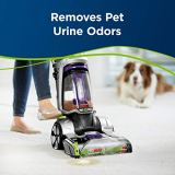 Bissell Professional Pet Urine Eliminator + Oxy Carpet Cleaning Formula, 48 oz, 1990, 48 Ounce