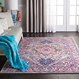 Nourison PSN20 Passion Persian Colorful Light Grey/Pink Area Rug 5'3' X 7'3', 5' x 7'