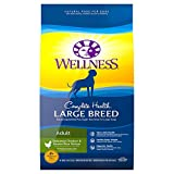 Wellness Natural Pet Food Complete Health Natural Dry Large Breed Dog Food,...