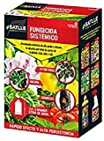 Fitosanitarios - Fungicida sistmico caja 250g - Batlle