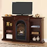 Duluth Forge Dual Fuel Ventless Fireplace with Bookshelves 15,000 BTU, T-Stat, Chocolate Finish