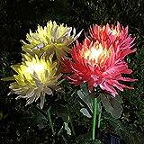 Spring Artificial Chrysanthemum...image