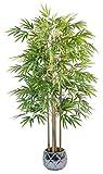 Maia Shop - Arbre artificiel avec cannes vertes pour décoration de maison, Eucalyptus, Hauteur 150 cm
