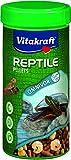 Vitakraft - 25083 - Turtle Pellets pour Tortues Aquatiques et...