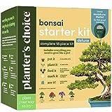 Bonsai - Kit de cultivo de rbol  Crecimiento de 4 rboles bonsis para interiores  Planta un jardn de semillas  Regalos de jardinera nicos para mujeres y hombres jardineros