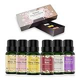 Huiles Essentielles Aromathérapie Naturelle 100% Pures 6 * 10ml, ESSLUX...