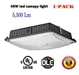 1000LED LED Canopy Light, 45W 5,300 Lumens, 200W HID/HPS Replacement,10' x 10', Daylight White 5000K, AC110-277V, Ceiling Lighting Fixtures