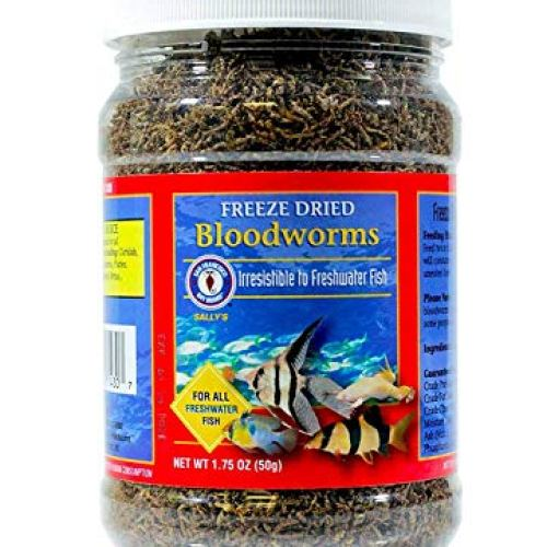 SAN FRANCISCO BAY Brand Freeze Dried Bloodworms