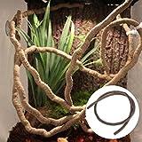 Jiamins Vignes de Reptiles (1m), Jungle Flexible grimpeur décor de l'habitat de vignes l'escalade,...