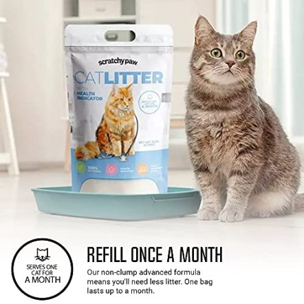 Alpha-Paw-Cat-Litter-with-Health-Indicator-Odor-Eliminating-Low-Tracking-Natural-Cat-Litter-Non-Clumping-Dust-Free-Non-Stick-High-Absorption-Kitty-Litter-Unscented