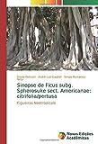Sinopse de Ficus subg. Spherosuke sect. Americanae: citrifolia/pertusa: Figueiras Neotropicais
