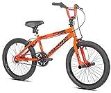 Razor High Roller BMX/Freestyle Bike (20-Inch Wheel)