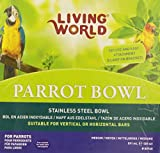 Living World Stainless Steel bowl, 20-Ounce