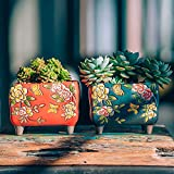 Sungmor Set of 4 - Jardinière en céramique de Style Artisanal - 14CM Plante de Cactus succulente - Joli Pot à Fleurs en Forme de Paysage de Windows - Idée de Cadeau Simple