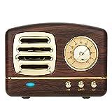 COOLEAD Altavoz portatil Bluetooth Vintage Mini Efecto del Sonido HiFi Envolvente estéreo 3D...