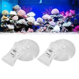 POPETPOP 2pcs Seaweed Clip,Fishes Veggie Seaweed Suction Cup Clip Feed Holder Feeding Tool for Fish Tank Aquarium Accessories