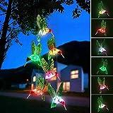 Hummingbird Solar Light,...image