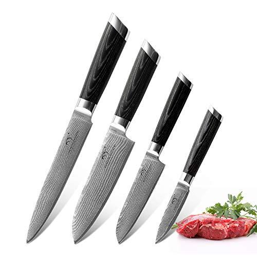 NANFANG BROTHERS 4 Pezzi Set di Coltelli Damasco da Cucina Professionali Chef Giapponese Acciaio da 67 Strati Coltello da Cuoco
