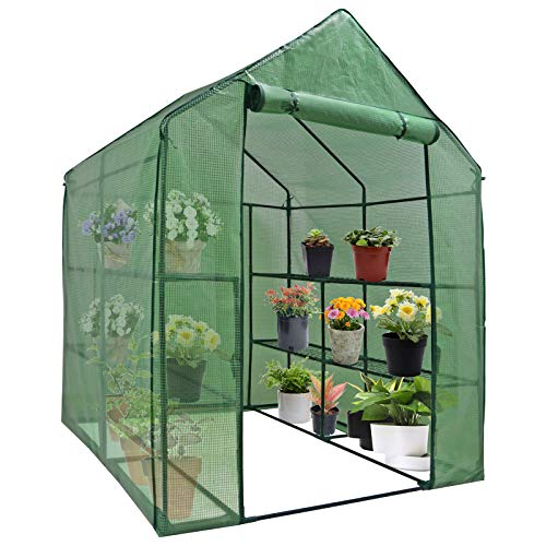 Mini Walk-in Greenhouse Indoor Outdoor -2 Tier 8 Shelves- Portable Plant Gardening Greenhouse (57L x 57W x 77H Inches), Grow Seeds & Seedlings, Herbs Flowers or Tend Potted Plants