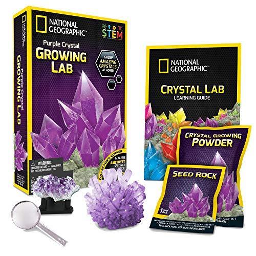 NATIONAL GEOGRAPHIC Purple Crystal Growing Lab - DIY Crystal...