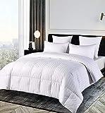 Blue Ridge Home Fashions 500 Thread Count Cotton Damask Duraloft Down Alternative Comforter - Twin
