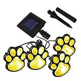 Solar Paw Print...image