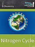 Nitrogen Cycle - School Movie on Chemistry