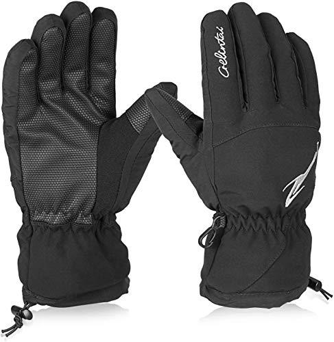Hicool Skihandschuhe Erwachsene wasserdichte Winterhandschuhe Schnee Handschuhe Outdoor Handschuhe Sport Handschuhe für Damen und Herren (M, Schwarz)