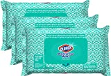 Clorox Disinfecting Bleach Free Cleaning Wipes, 75 Wipes, Pack of 3...