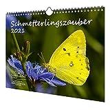 Calendrier magique au format A4 pour 2021 papillons – âme magique