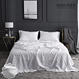 Simple&Opulence 100% Linen Sheet Set Embroidery(Queen,White)