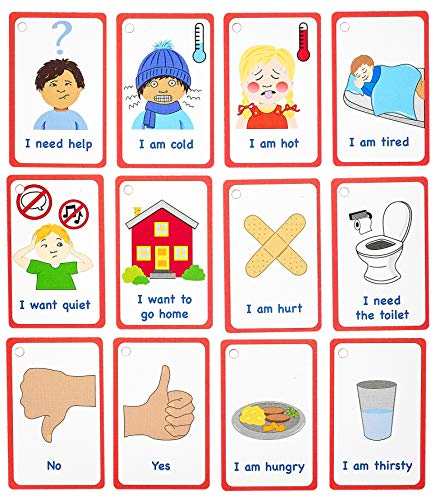 My Essential Needs Cards 12 Flash Cards for Visual aid...